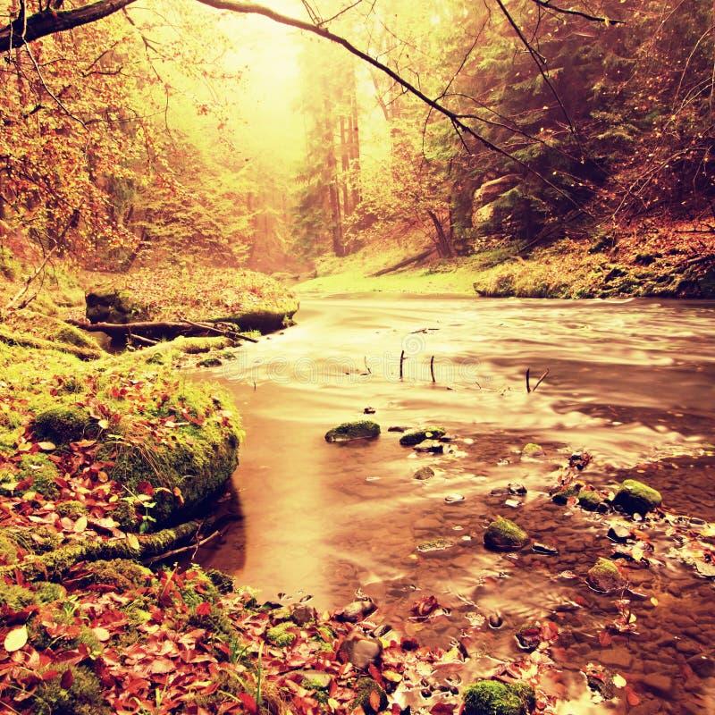 Visión en el río de la montaña del otoño con las ondas borrosas, las piedras y los cantos rodados cubiertos de musgo verdes fresc imagen de archivo