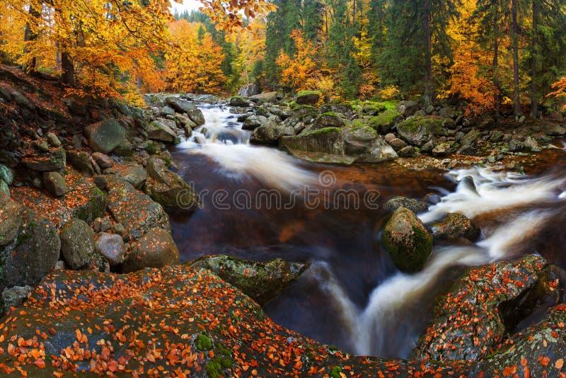 Visión en el río de la montaña del otoño con las ondas borrosas, las piedras cubiertas de musgo verdes frescas y los cantos rodad fotografía de archivo