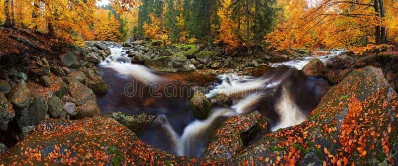 Visión en el río de la montaña del otoño con las ondas borrosas, las piedras cubiertas de musgo verdes frescas y los cantos rodad fotos de archivo