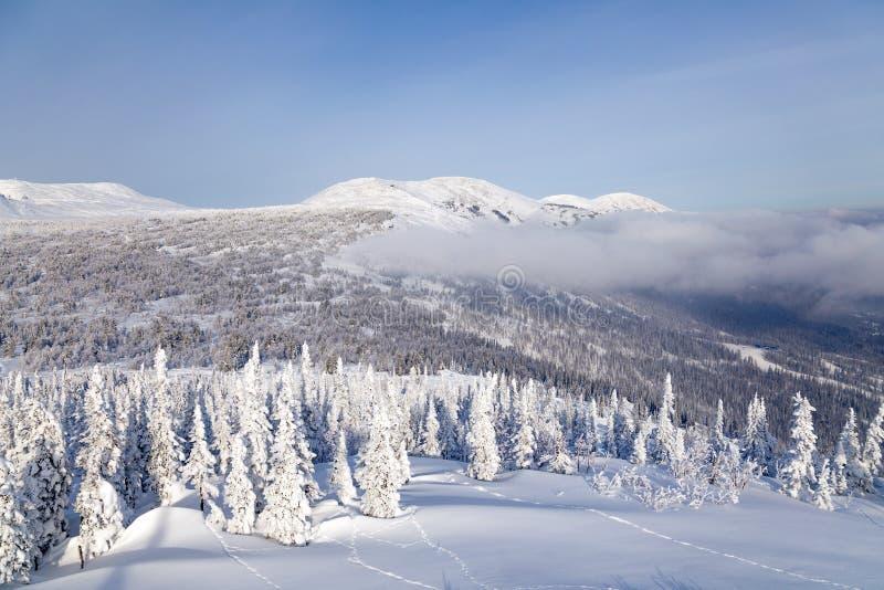 Visión escénica panorámica desde el top del invierno de los paisajes de la montaña val imágenes de archivo libres de regalías