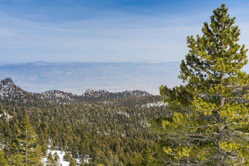 Visión hacia el tranvía aéreo del Palm Springs en el canto del rastro para montar el pico de San Jacinto, California imágenes de archivo libres de regalías