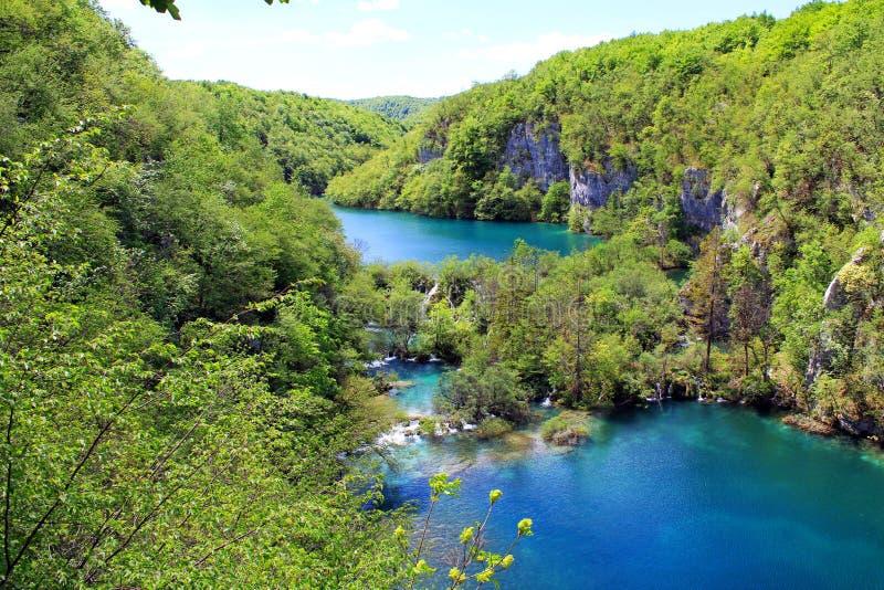 Visión impresionante en los lagos parque nacional, Croacia Plitvice  imágenes de archivo libres de regalías