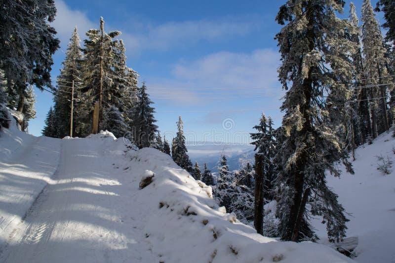 Visión increíble desde la garganta a la montaña coronada de nieve fotos de archivo