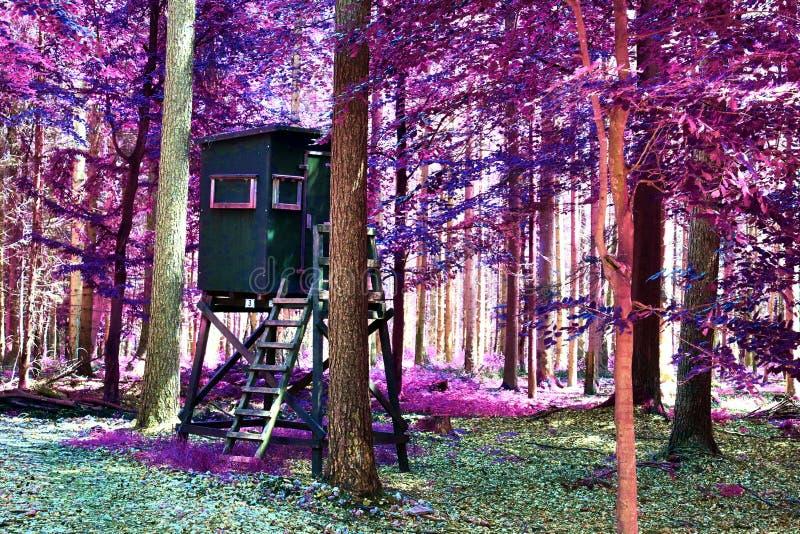 Visión infrarroja hermosa en un bosque púrpura de la fantasía imagenes de archivo