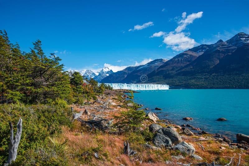 Visión maravillosa en el glaciar enorme de Perito Moreno en la Patagonia en otoño de oro, Suramérica imagen de archivo libre de regalías