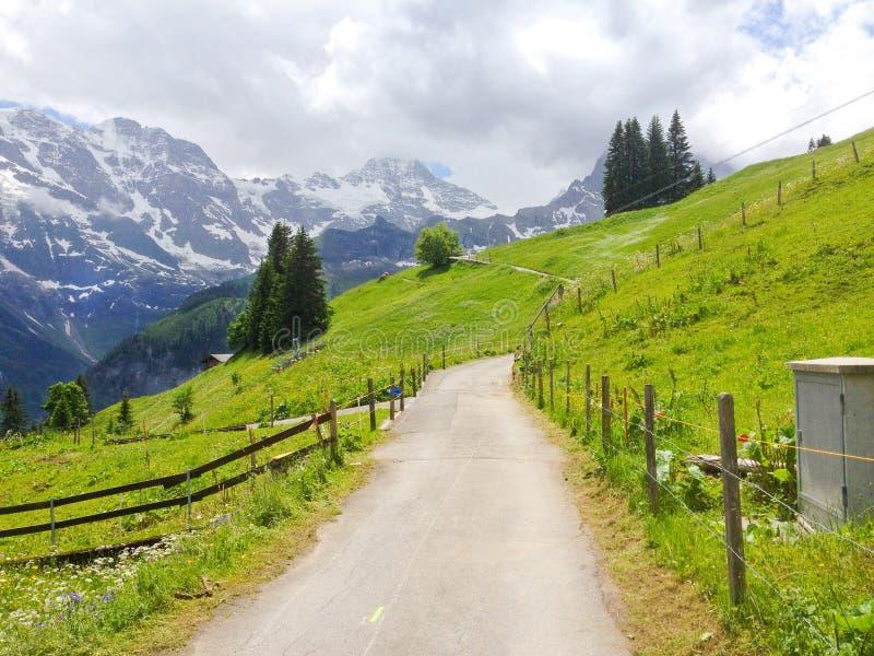 Visión panorámica espectacular desde el rastro que camina de Murren-Gimmelwald con picos de montaña suizos de las montañas de Eig foto de archivo libre de regalías