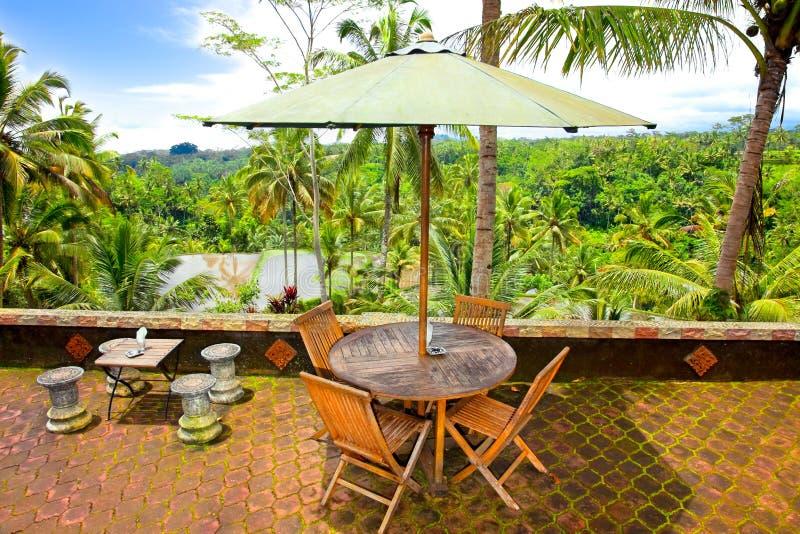 Visión panorámica increíble en la selva de Bali fotos de archivo