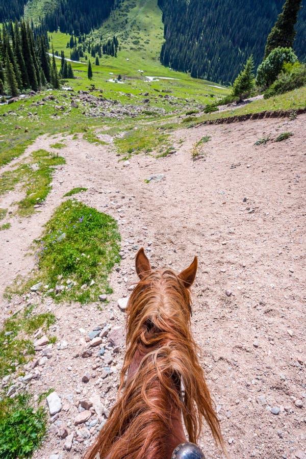 Visión sobre el valle de la parte posterior del caballo, Kirguistán imagenes de archivo