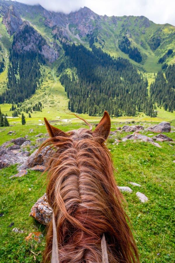 Visión sobre el valle de la parte posterior del caballo, Kirguistán fotos de archivo libres de regalías