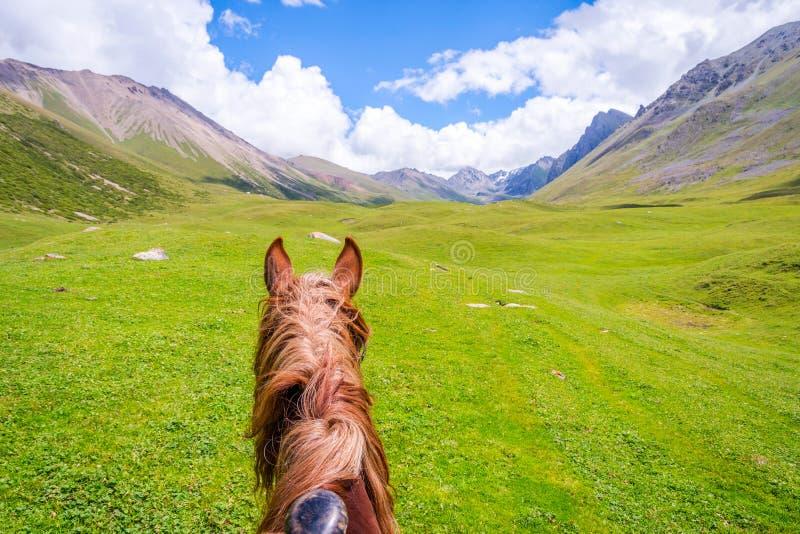 Visión sobre el valle de la parte posterior del caballo, Kirguistán foto de archivo