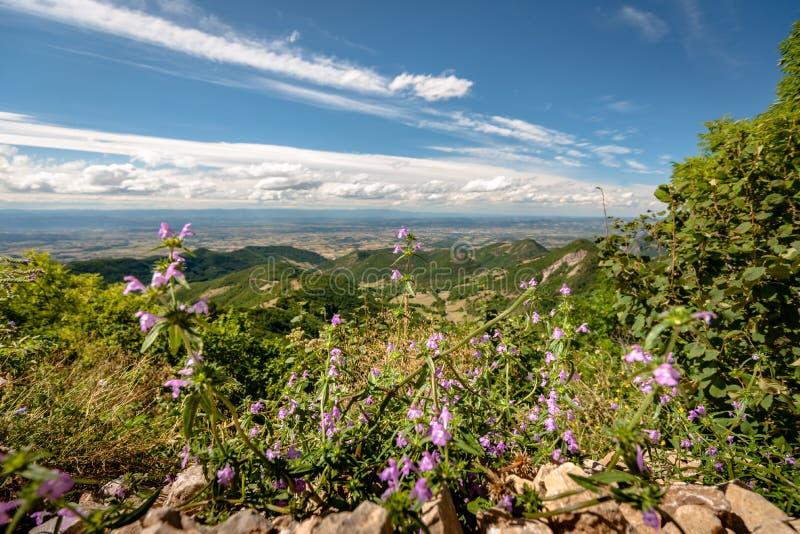 Visión sobre el valle de Rhone y las montañas del Ardeche y fotos de archivo libres de regalías
