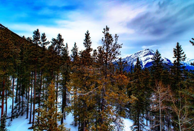 Visión sobre la ciudad de Banff y las montañas rocosas canadienses vistas de S imagenes de archivo