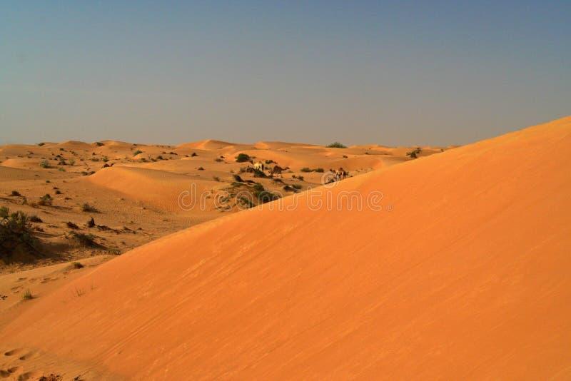 Visión sobre la duna de arena anaranjada roja en dromedario remoto contra el cielo azul fotos de archivo libres de regalías