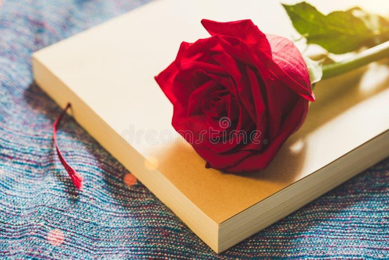 Visión superior y cierre encima de la imagen en rosa brillante del rojo en un libro viejo foto de archivo libre de regalías