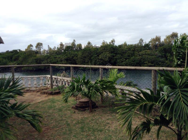 Visión tropical foto de archivo libre de regalías
