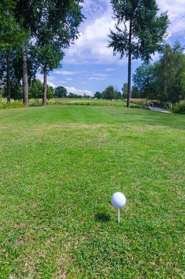 Visión vertical desde el campo de golf sueco foto de archivo