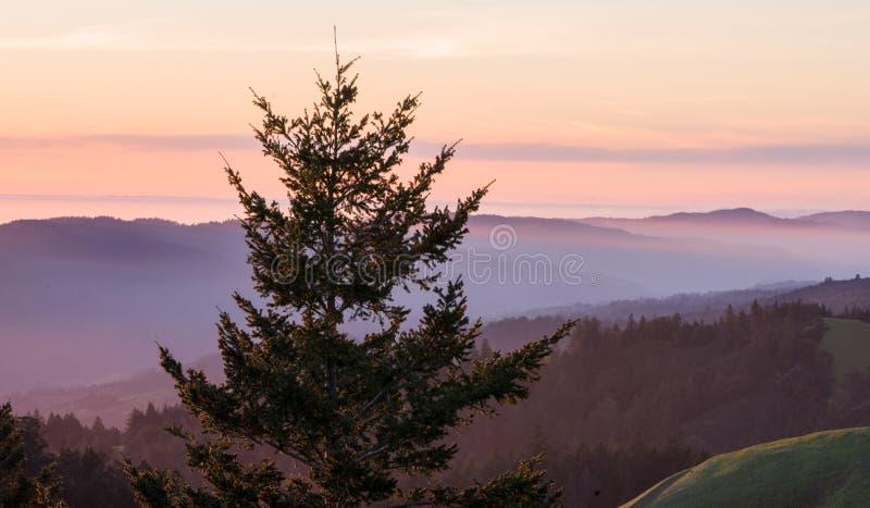 Visi?n desde Mt Tamalpais en la puesta del sol foto de archivo libre de regalías