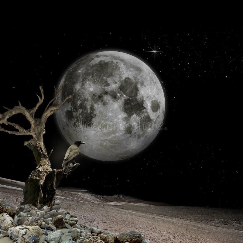 Visibilité de lune photographie stock libre de droits