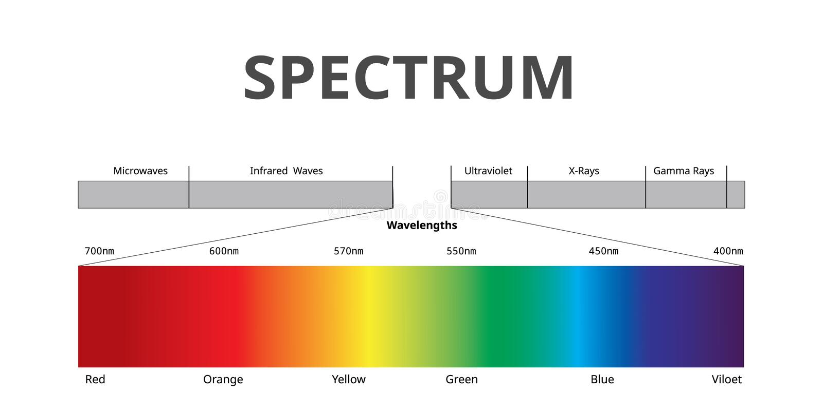 Visible Spectrum color, Electromagnetic Spectrum that Visible to the human eye, Sunlight color,. Infographic royalty free illustration