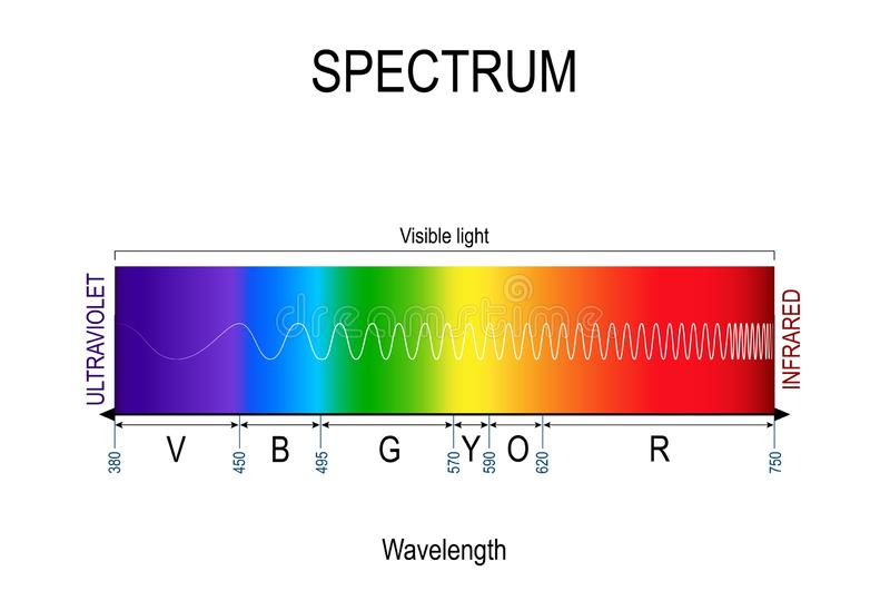 Visible spectrum color. infographic of sunlight color. In order of increasing frequency and decreasing wavelength. Range of spectrum from 350 to 750 nanometer royalty free illustration