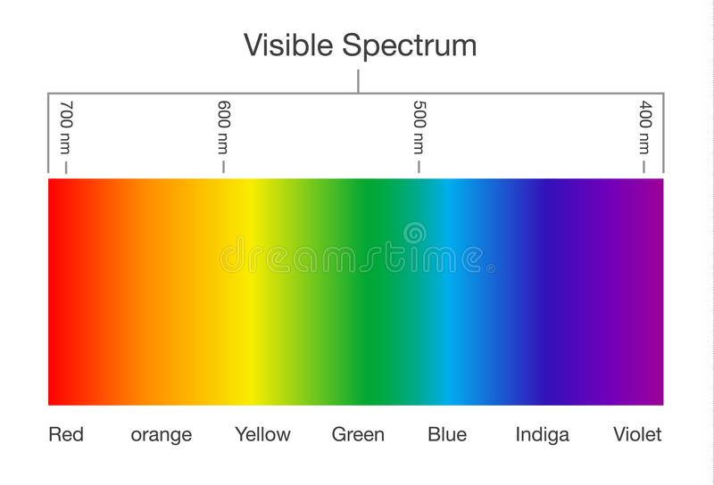 Visible spectrum of light. Illustration about Human vision royalty free illustration