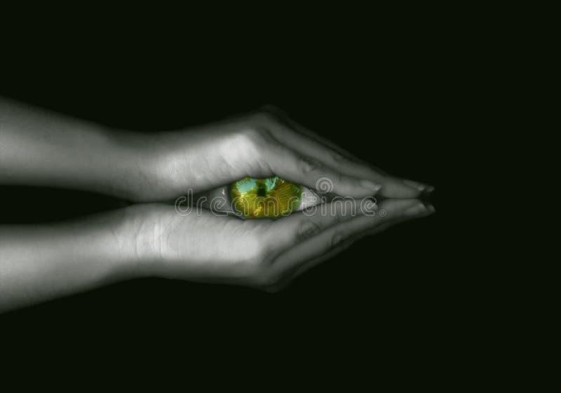 Visionäres Auge stockbild