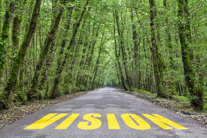Jungle road to vision royalty free stock photography