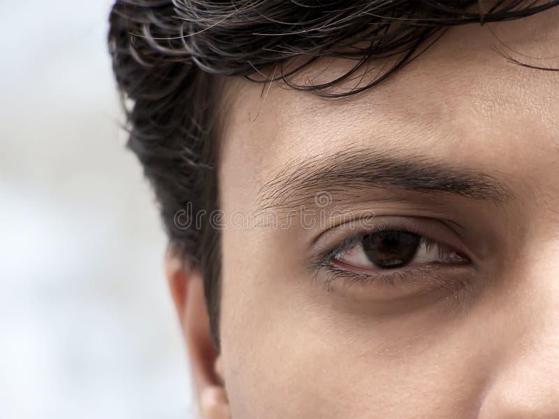 Visione fotografia stock
