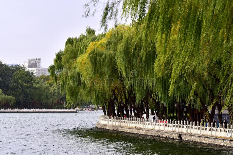 Visit Beijing Shichahai in the autumn. Shichahai is located in the northwest corner of Beijing City, including Qianhai, Houhai and the West also called Jishuitan stock image