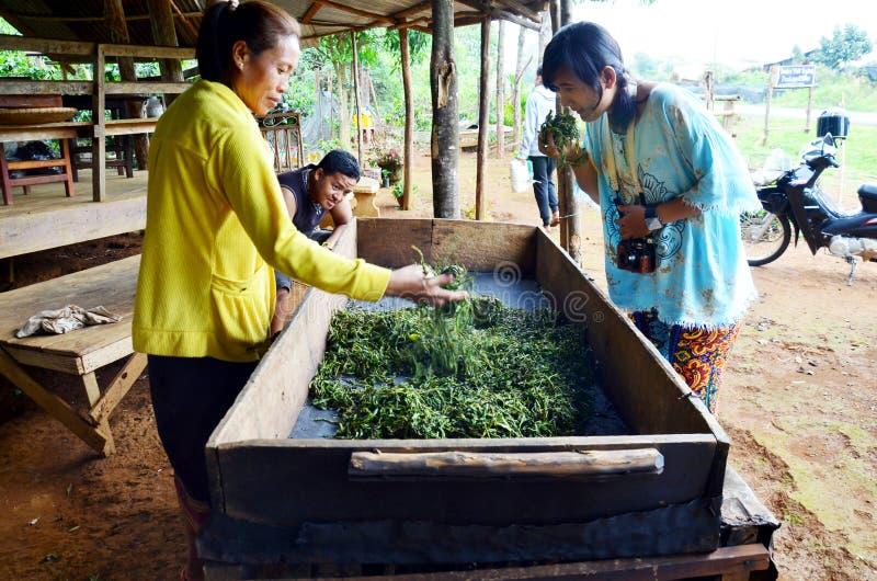 Visita dos povos tailandeses e aprendizagem com a mulher adulta laotian que trabalha o PR fotos de stock royalty free