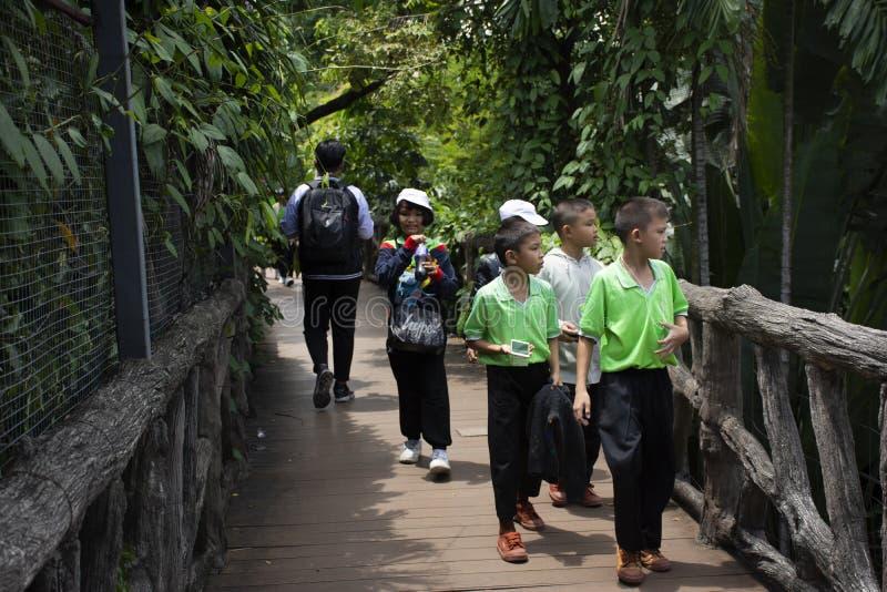 Visita tailandesa do estudante das crianças e excursão educacional que olham animais no jardim zoológico de Dusit em Banguecoque, foto de stock royalty free