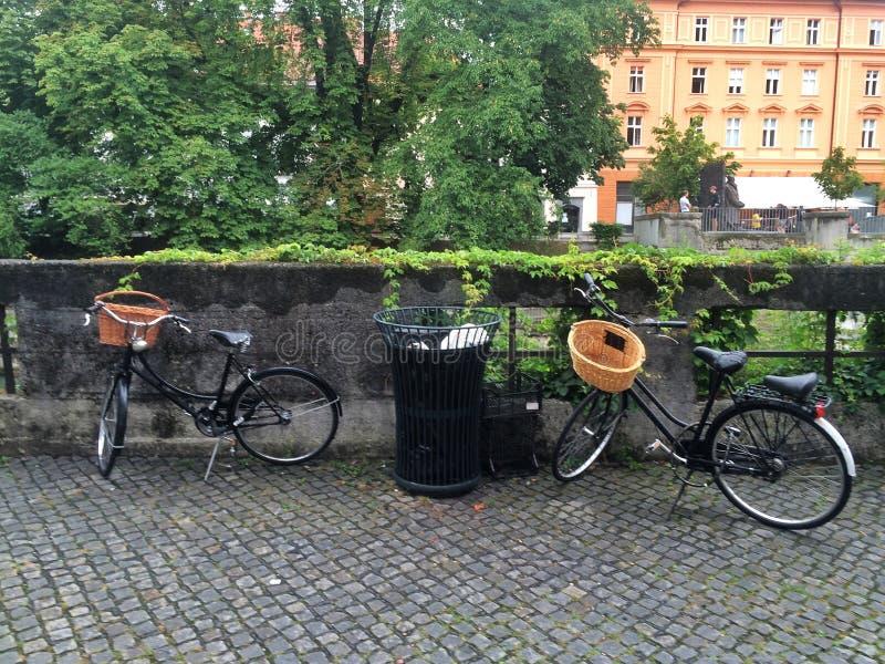 Visita turística de excursión en Ljubljana foto de archivo libre de regalías