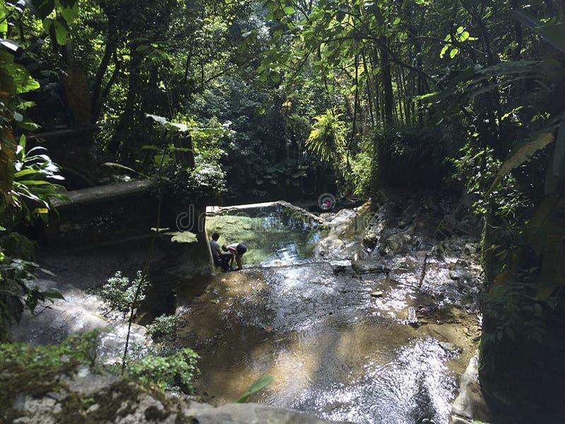 Visitando Xilitla Мексика стоковое изображение rf