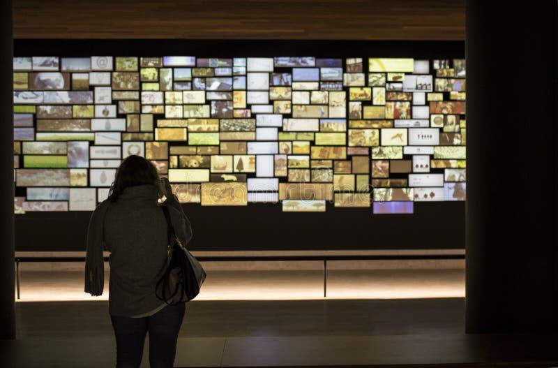 Visitante de la mujer que lleva imágenes la instalación video en el nacional fotos de archivo