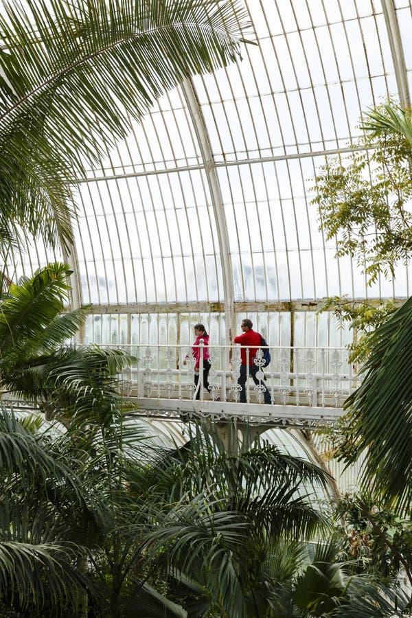 Visitantes nos jardins de Kew da casa de palma fotografia de stock