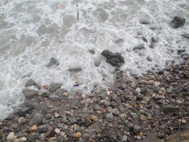 Visite de mer photos libres de droits
