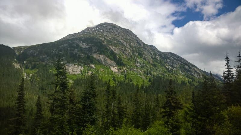 Visite de train vers le Yukon du port d'escale Skagway images stock