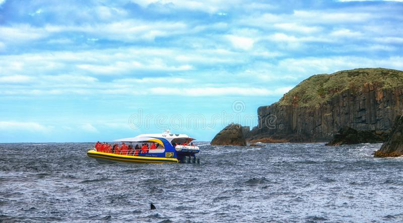 Visite o barco na ilha de Tasman, Tasmânia, Austrália imagens de stock