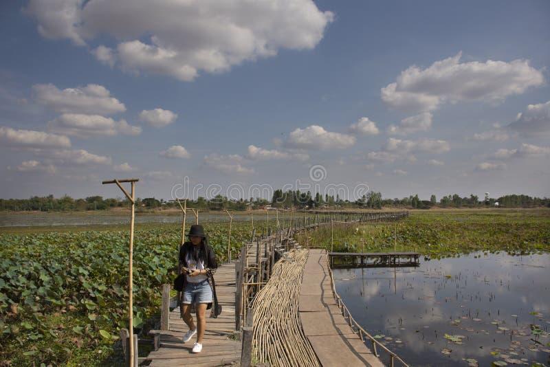 Visite thaïlandaise de voyage de personnes de femmes et portrait de pose pour la photo de prise sur le long pont en bois de Kae D image libre de droits