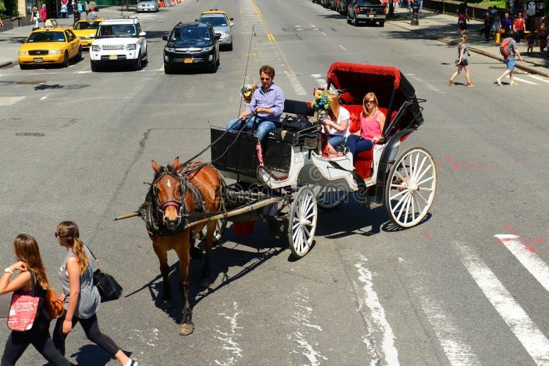Download Visites Hippomobiles De Chariot, New York City Image éditorial - Image du ville, architectural: 76089775