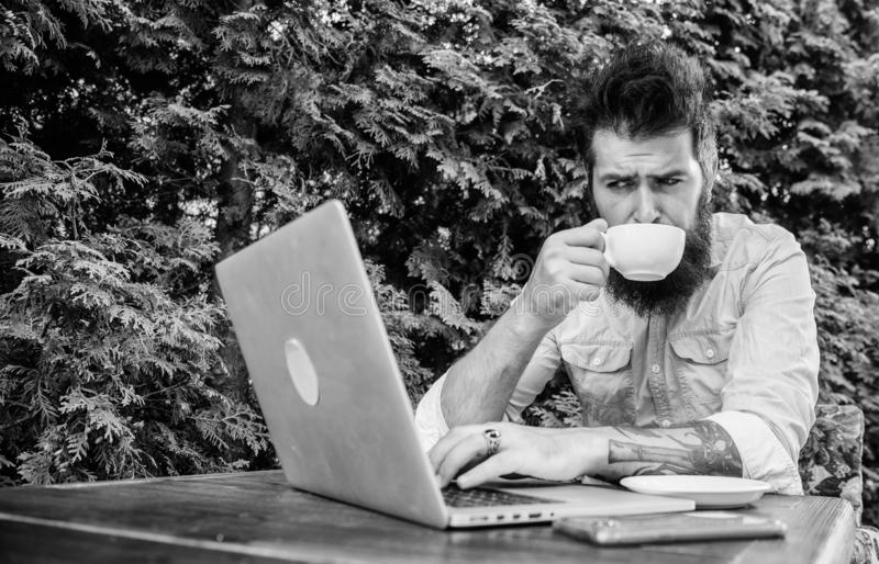 Visiting Internet cafe. Hipster enjoying tea and free wifi in outdoor cafe. Bearded man drinking and browsing the Web in royalty free stock image
