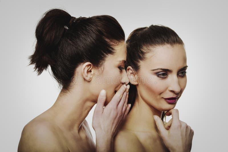 Viska för två skönhetkvinnor royaltyfria bilder