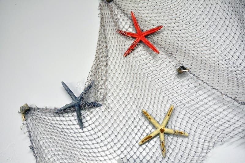 Visnet met zeester, maritieme zeevaartdecoratie over witte achtergrond met exemplaarruimte stock foto