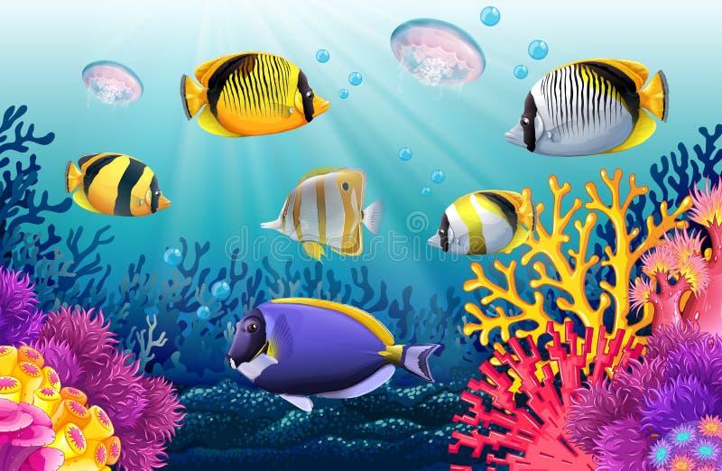 Vissen die onder het overzees zwemmen royalty-vrije illustratie