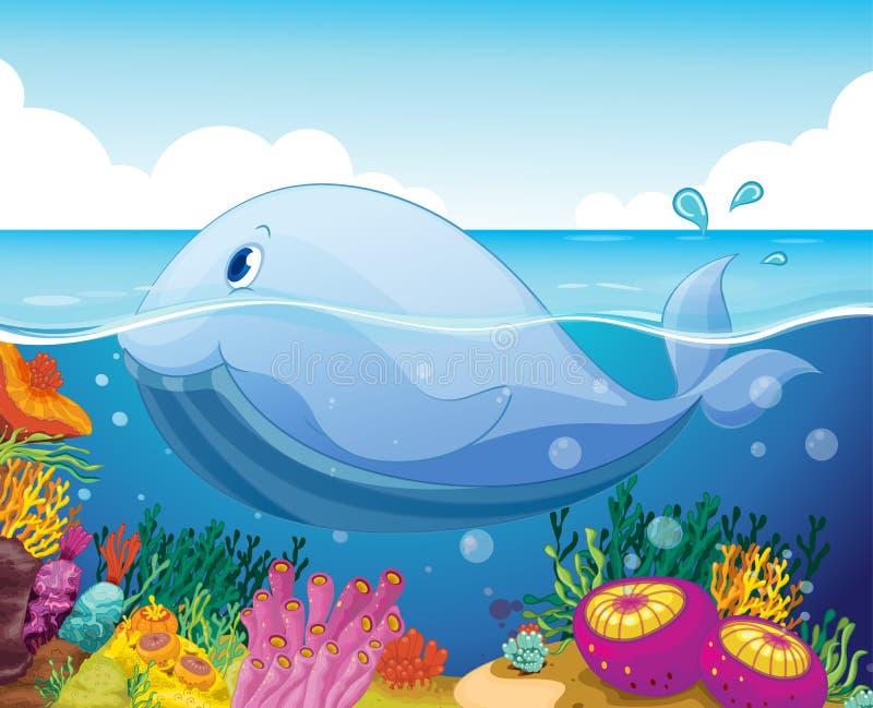 Vissen en koraal in het overzees royalty-vrije illustratie