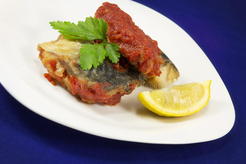 Vissen met tomatensous op plaat. royalty-vrije stock foto's