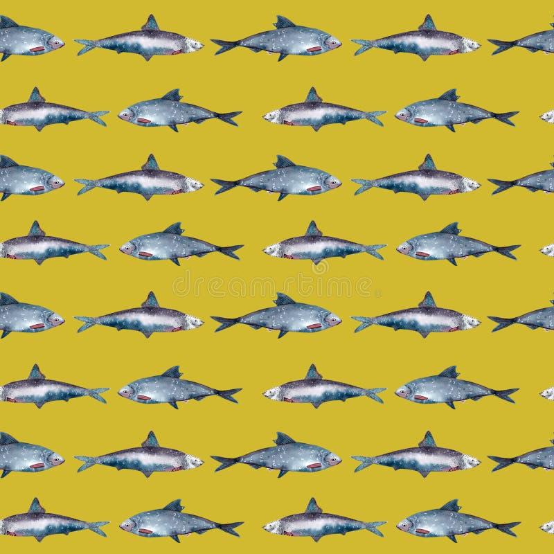 Vissen naadloos patroon, sardine stock illustratie