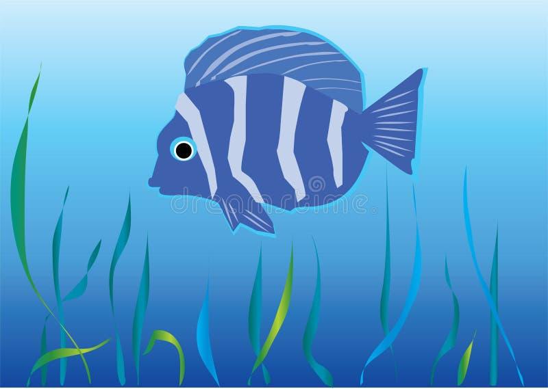 Vissen onder water vector illustratie