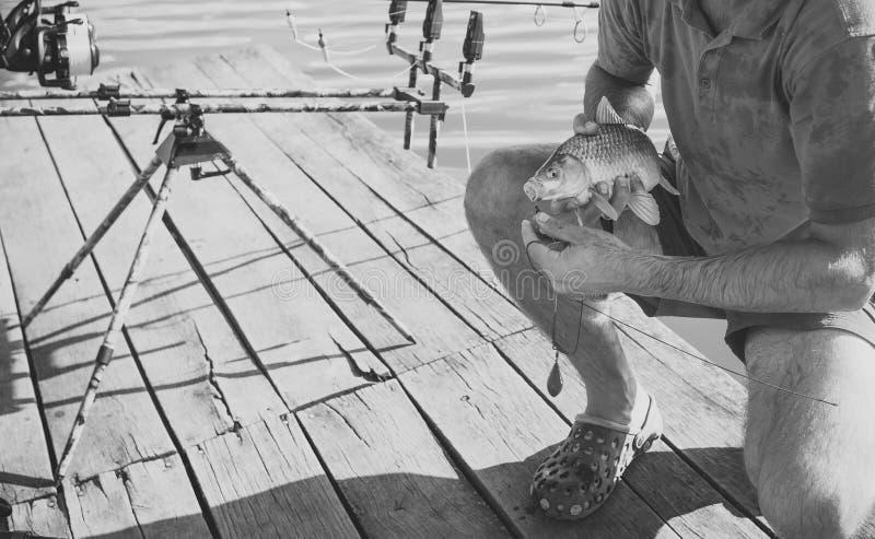 Vissen op mond in mannelijke handen worden vastgehaakt, aas visserij die royalty-vrije stock afbeelding