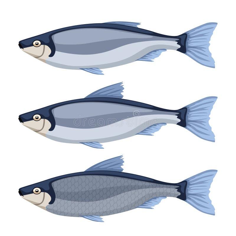 Vissen op wit worden geplaatst dat stock illustratie